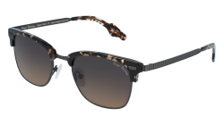 Vinyl Factory CAUGHTHRAN C3 Polarized